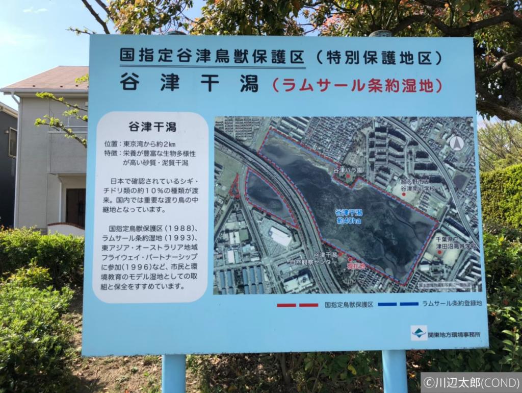 谷津干潟を説明する水色の看板