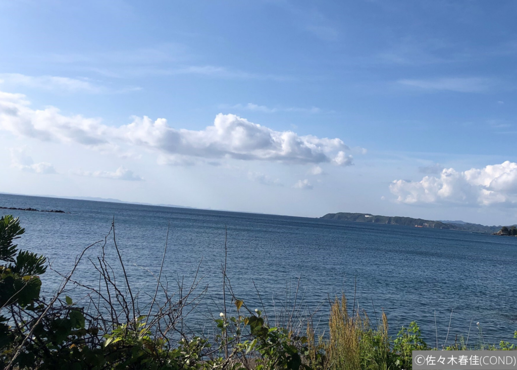 広い海を陸から眺める