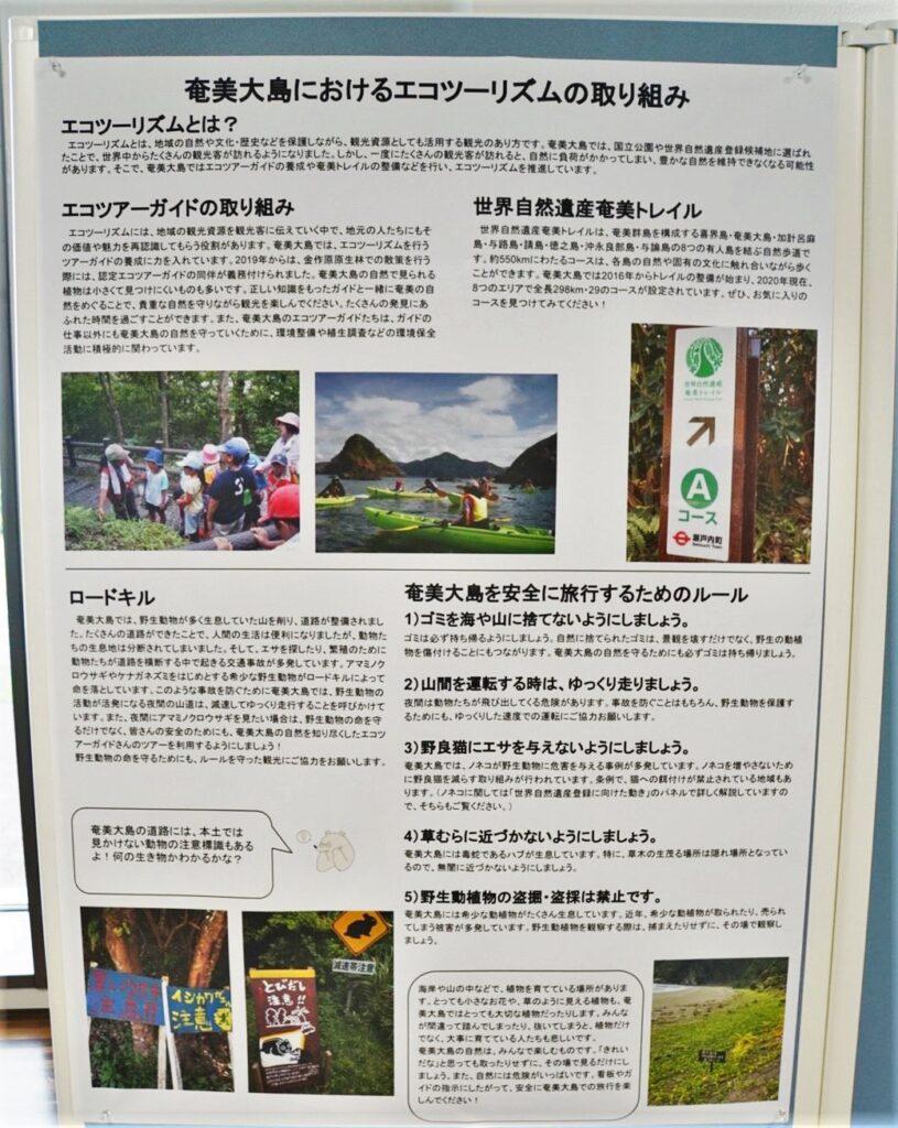 奄美大島におけるエコツーリズムの取り組み