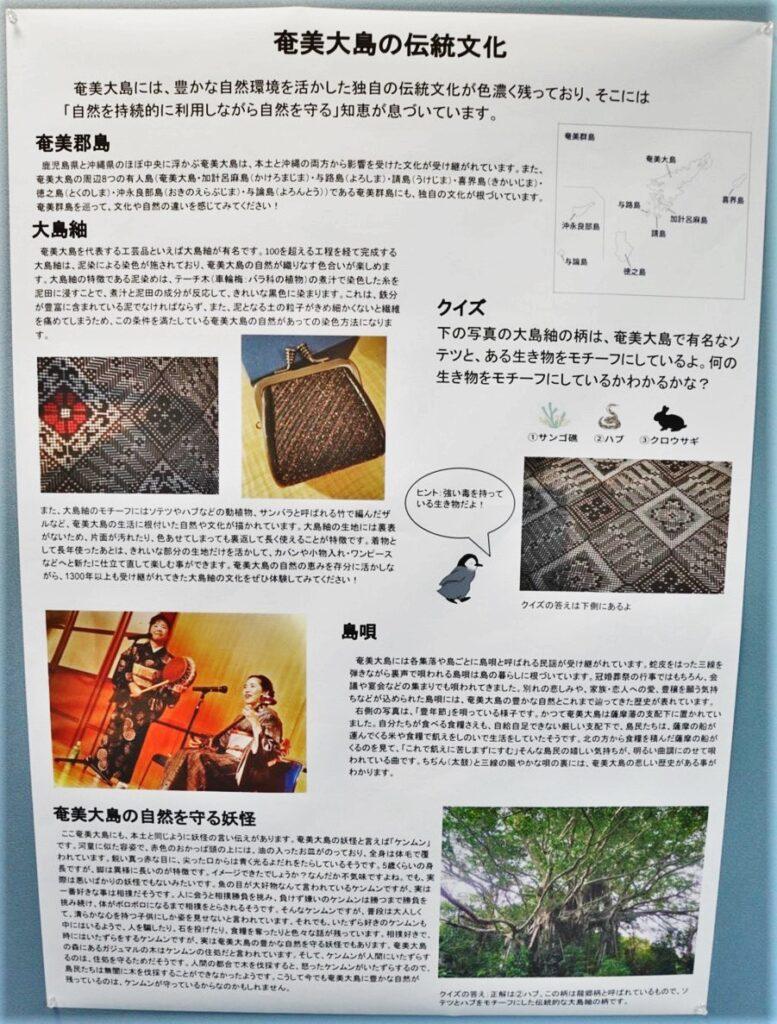 奄美大島の伝統文化